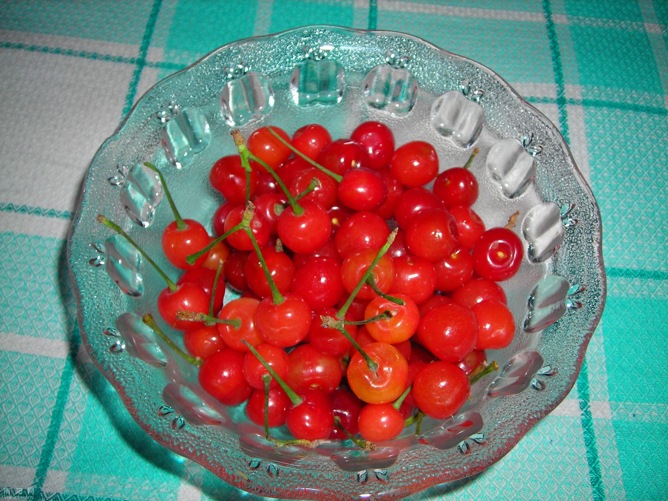 壁纸 矢量 水果 小果 植物 2592_1944