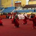 南阳2013太极拳大赛
