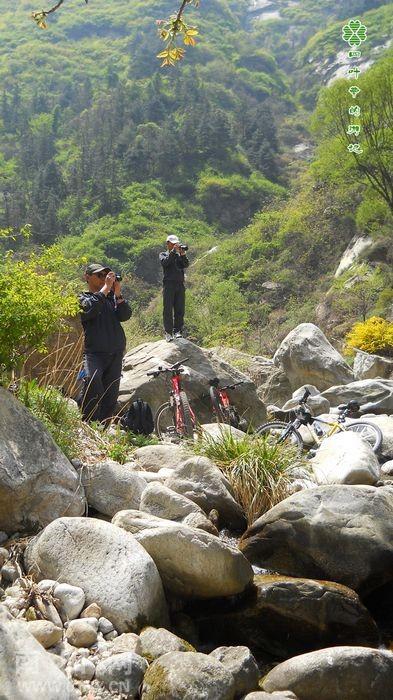 苍狼迷谷风景区图片