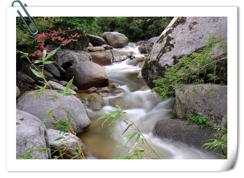 家乡的小溪图片