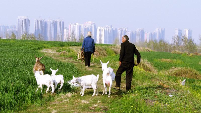 查询 - sortol.com 郊区图片 郊区照片 郊区摄影 郊区
