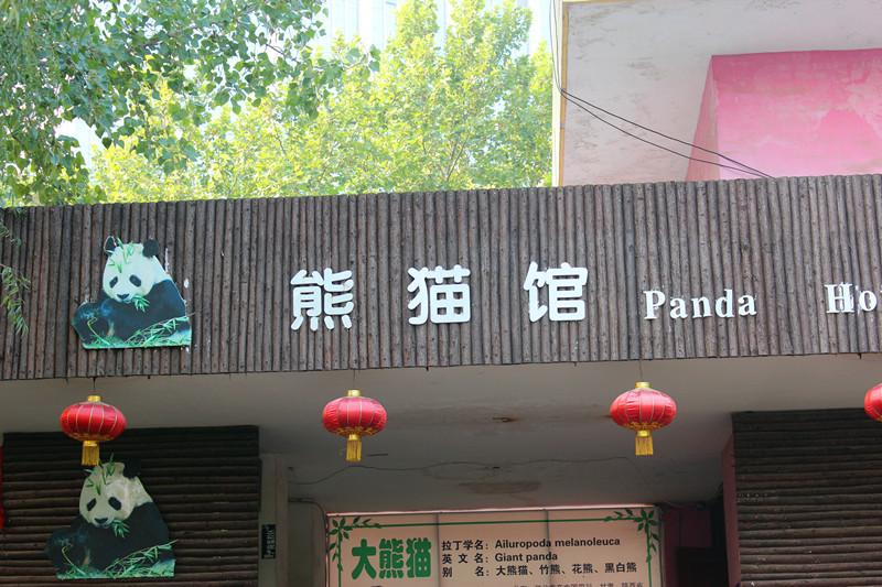 郑州动物园------熊猫馆