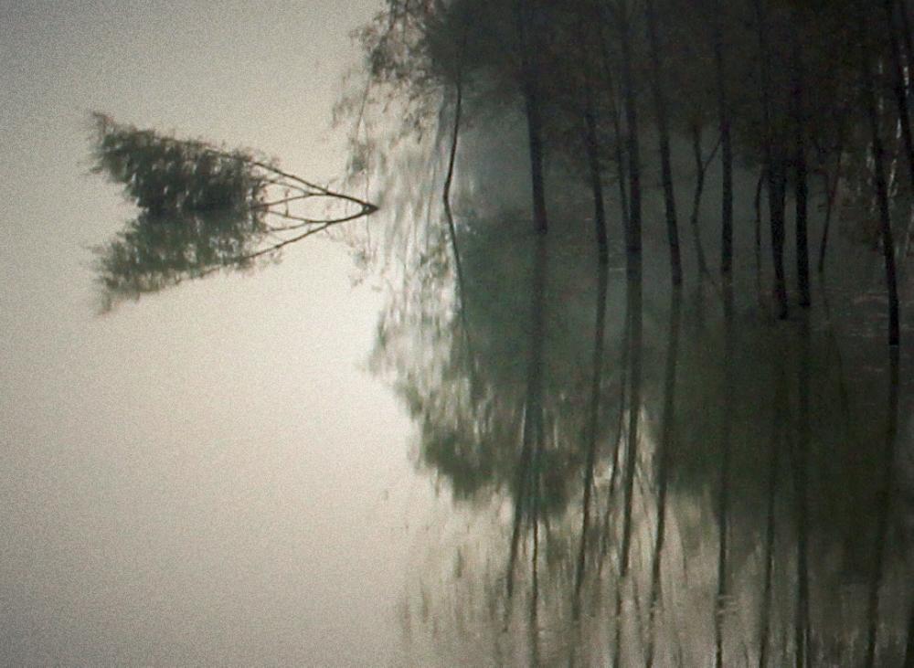 【原创】鹧鸪天 .  秋别 - 芬芬 - 小法岱特