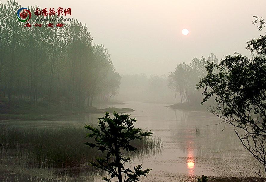 喜欢冬天的太阳-诗歌天地-36行南阳社区-bbs.01ny