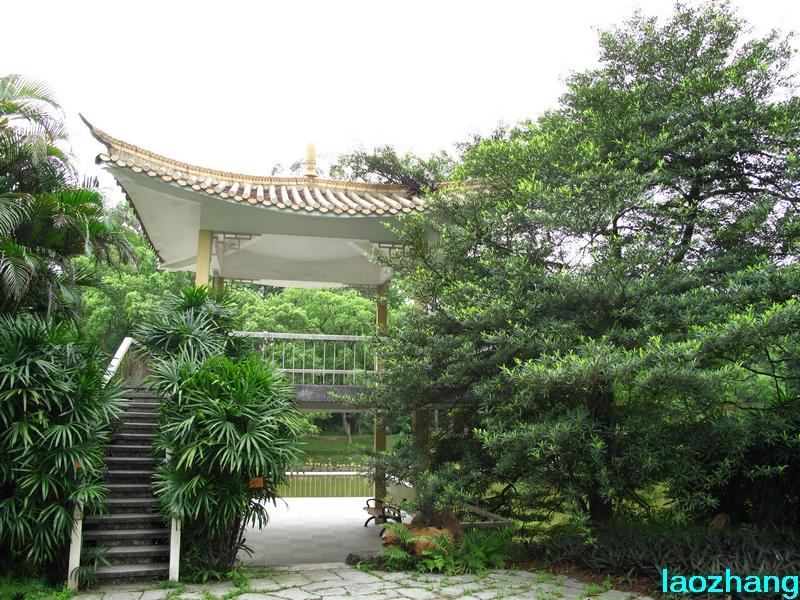 69 【光影中国】 69 新手图集 69 华南植物园---棕榈园1  邓州