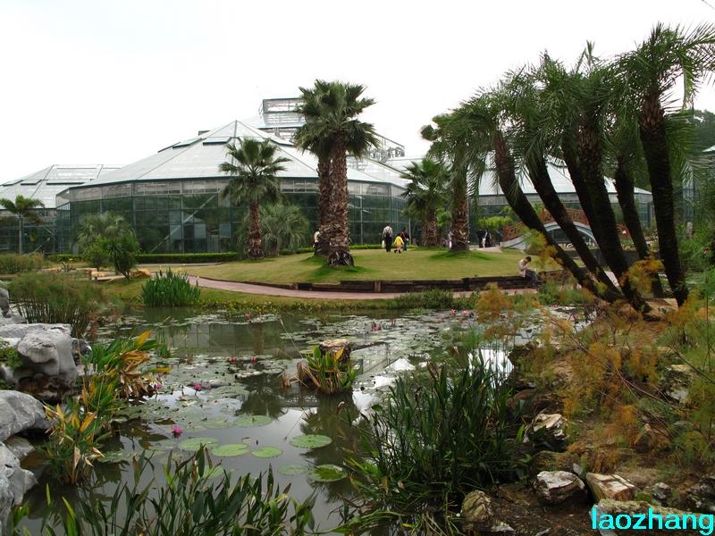 69 【光影中国】 69 新手图集 69 华南植物园---温室2  邓州