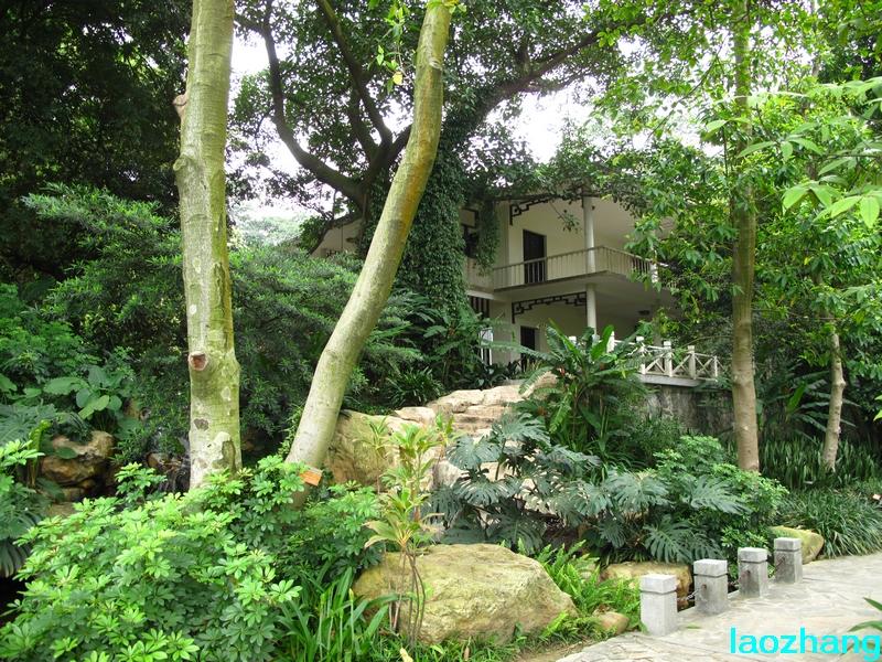 69 【光影中国】 69 新手图集 69 华南植物园---药园  邓州老张