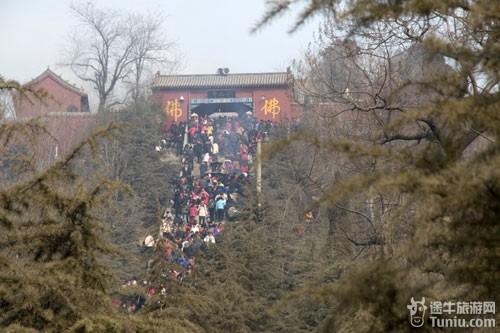 36行南阳社区 69 【游山玩水】 69 旅游资讯 69 大年相约芒砀山
