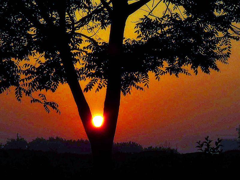 已升起的太阳