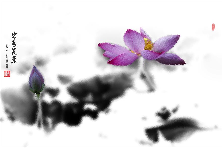 儿童国画莲花画法步骤