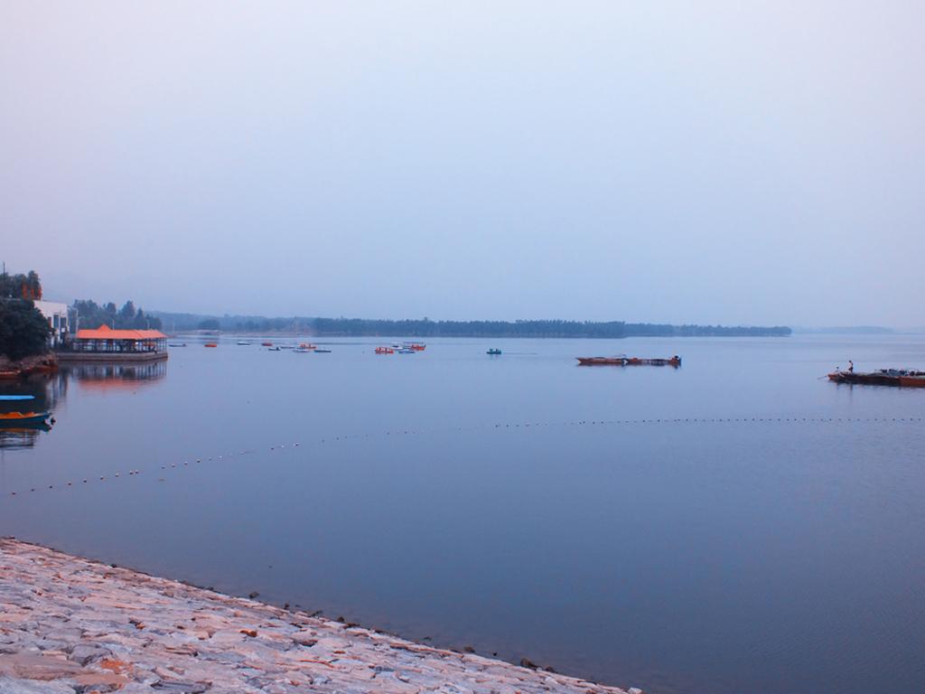 广西陆川珊罗_美丽的望花湖作文 描写荷花湖美的作文的题目
