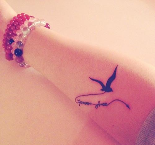 第四个纹身 2012年3月 海鸥 永远的自由