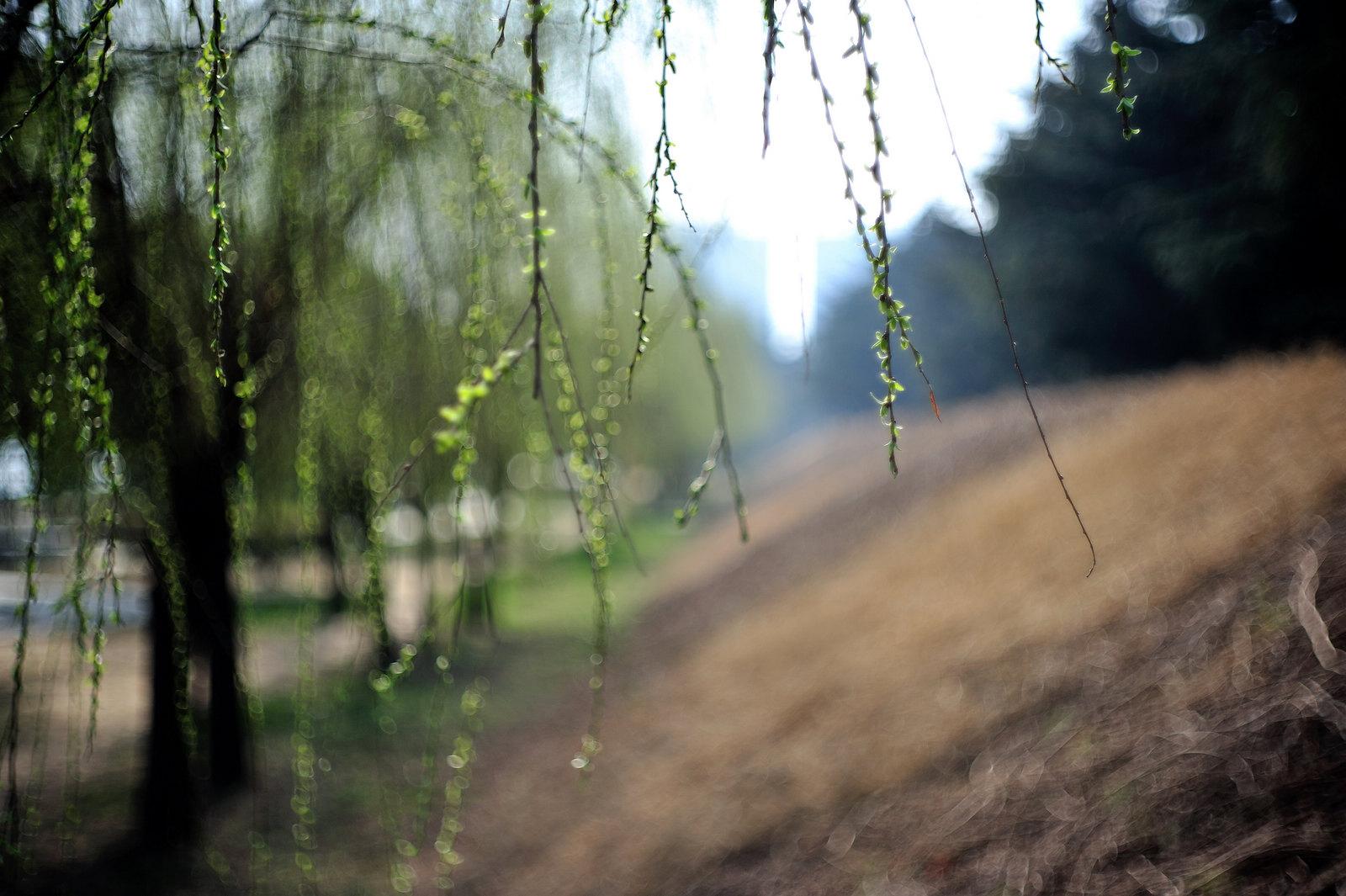 触摸阳光,感受春天