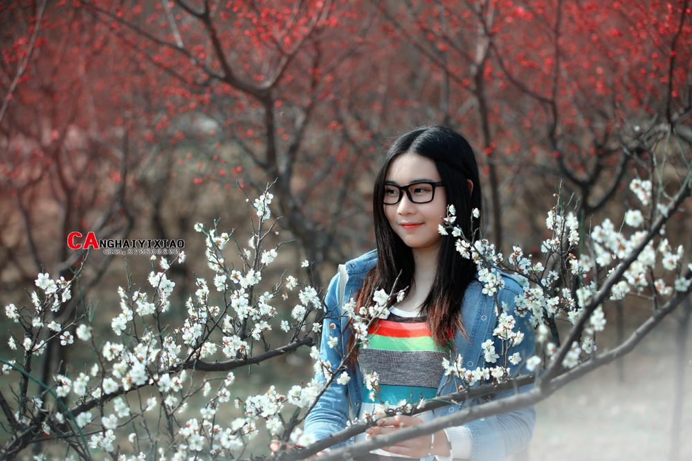 南阳网 [洛阳] 初春