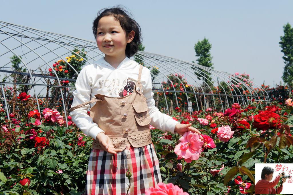 花从中的漂亮小姑娘