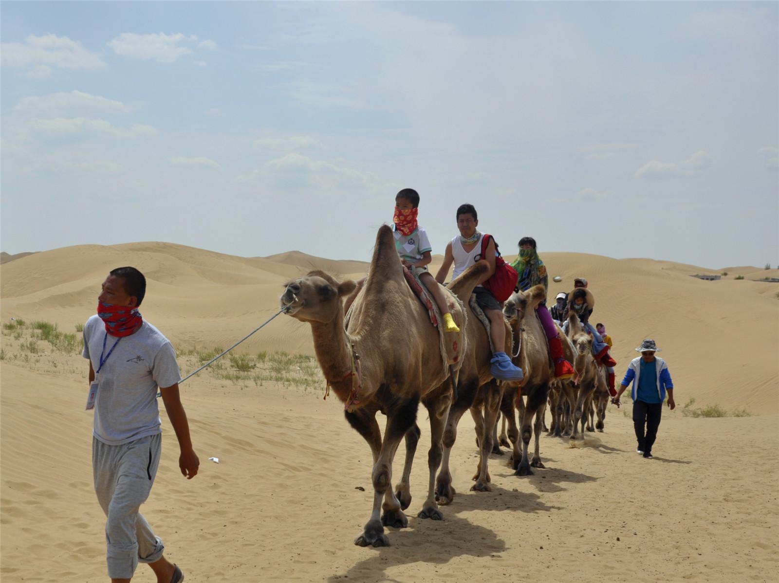 内蒙古掠影巍巍壮观的库不齐沙漠之三-沙漠之