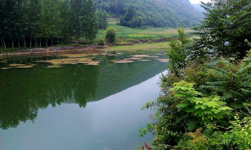 淅川黄家坝水库风景(手机拍摄)