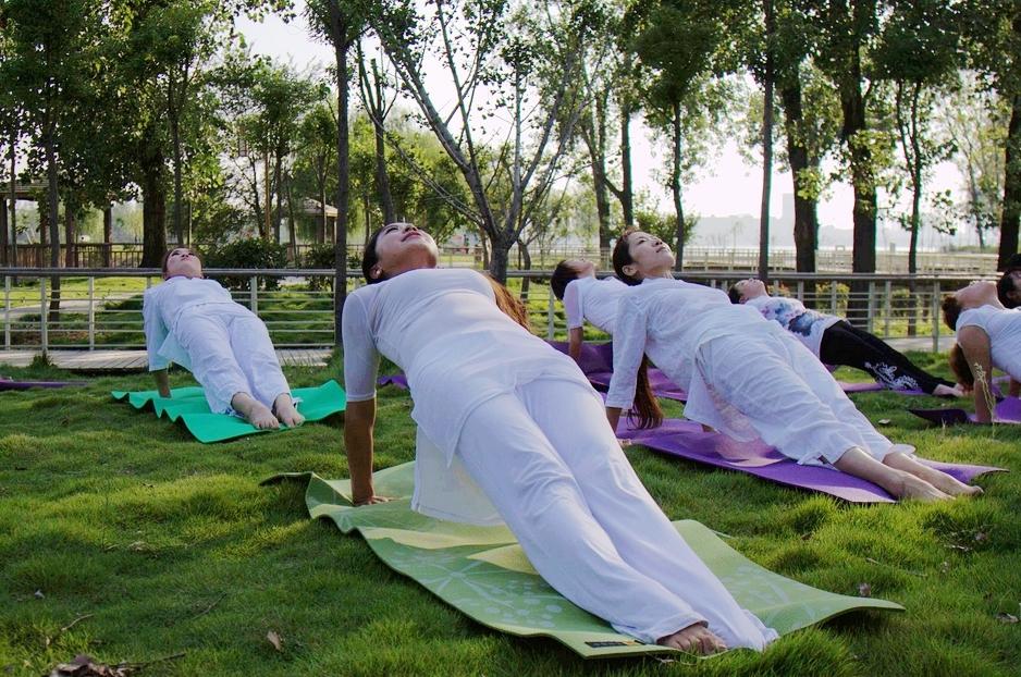户外瑜伽_户外瑜伽我的绿色氧气生活