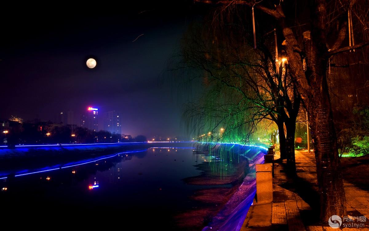 《十五的月亮》