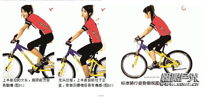 正确标准的山地车骑行姿势