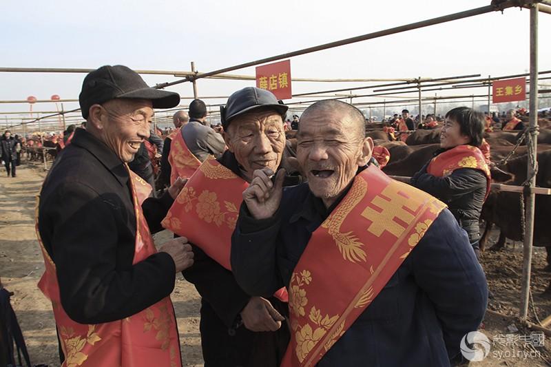 2010年11月15日,河南省郏县第六届红牛节上,老伙计们见面总有说不完的话题。 (3).jpg