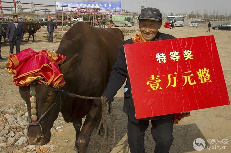 2010年11月15日,河南省郏县第六届红牛节上,最美红牛的主人获奖后乐得合不拢嘴,喜上心头。.jpg