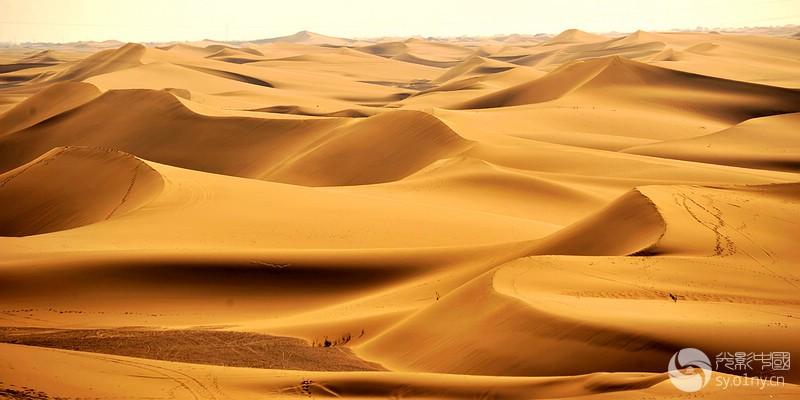 巴丹吉林沙漠.jpg