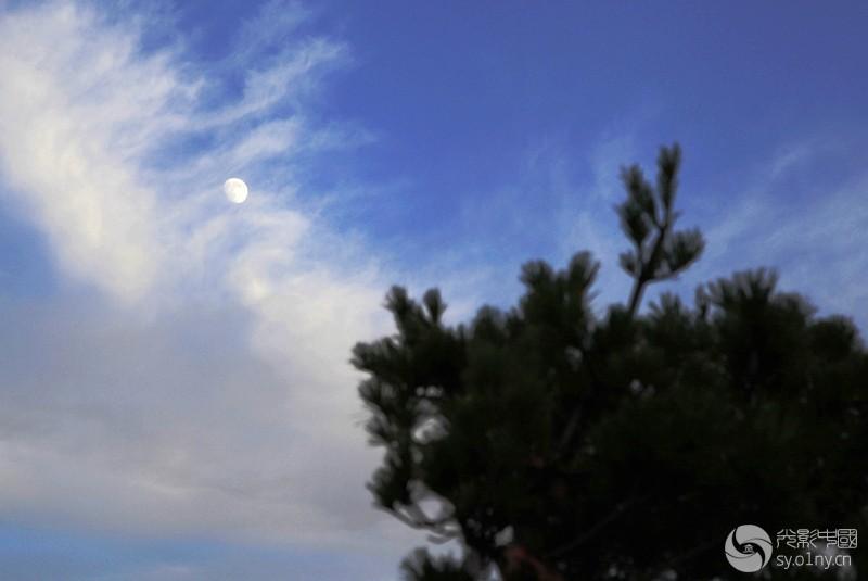 尧山明月松间照2