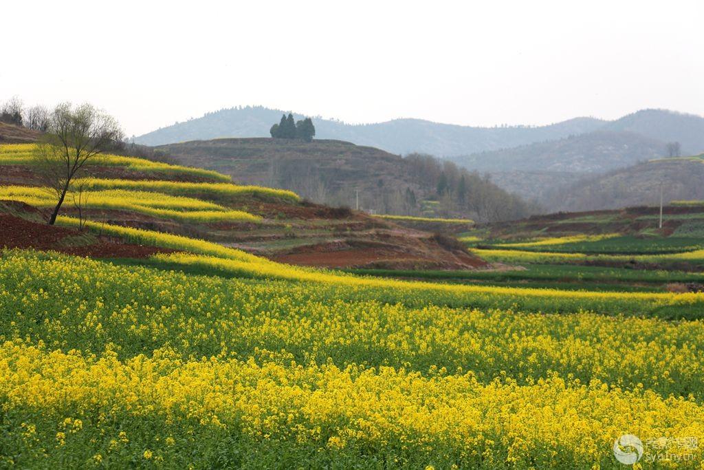 淅川毛堂山风景