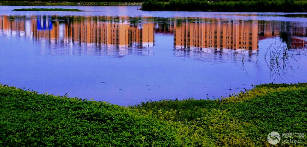 唐河湿地公园风景