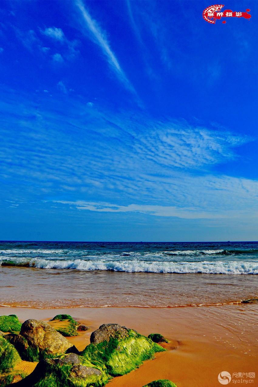 大海爱蓝天