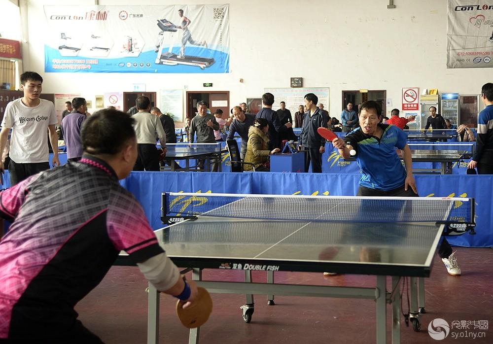 联赛摄影部南阳市乒乓球团体体育首站v联赛拍富甲天下4赛马图片