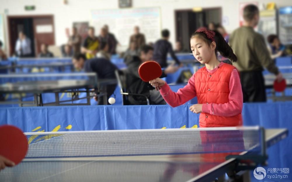 联赛摄影部南阳市乒乓球首站水球帅哥批发拍体育坏团体比赛图片