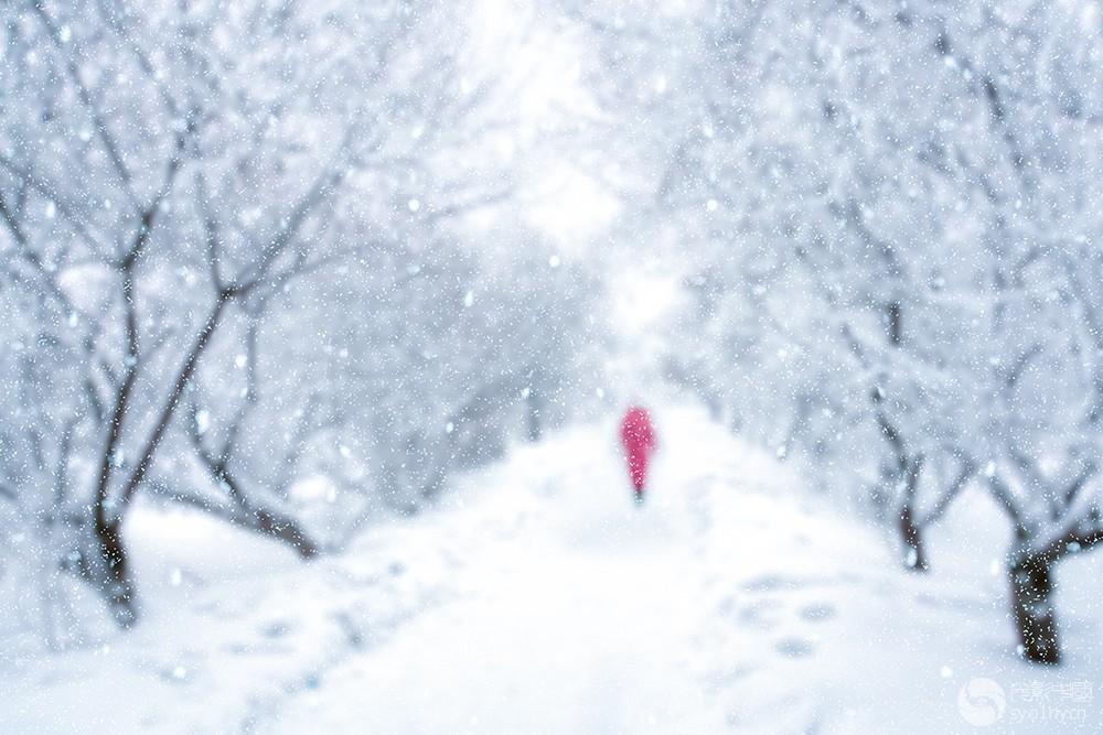 雪中行-聚焦朗.jpg