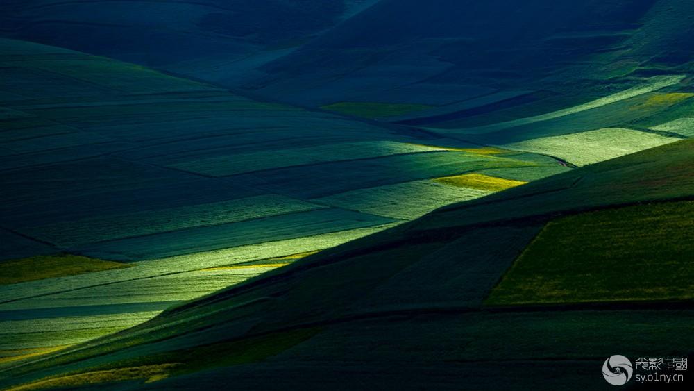 《田园光影》.jpg