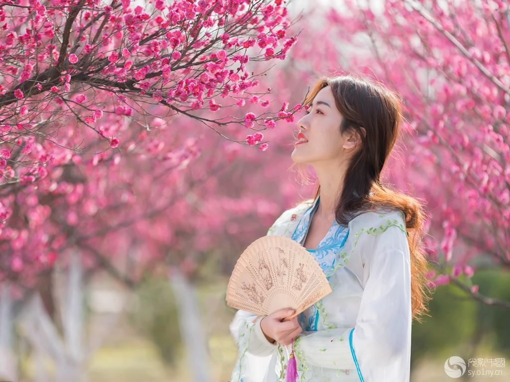 霓裳舞春风