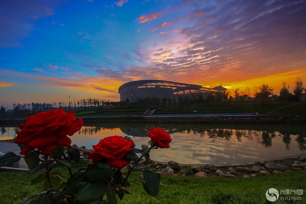 快乐光影摄于南阳体育场1.jpg