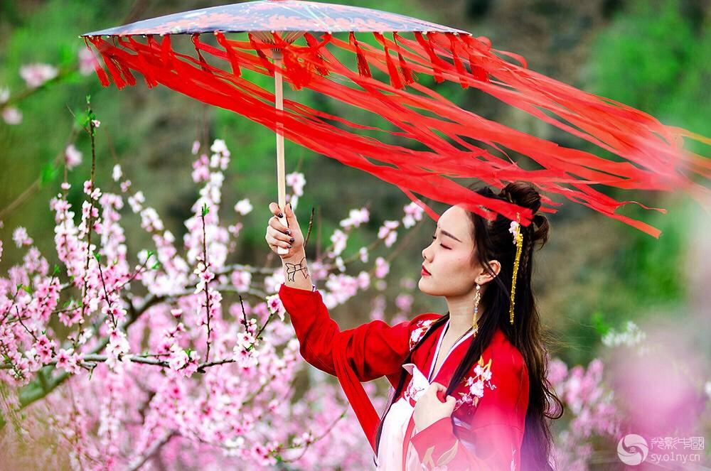 春风飘香—杨润—金冠酒厂—17638999983ss.jpg