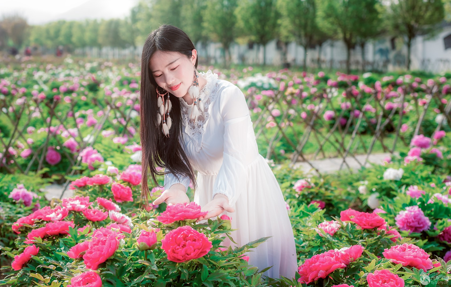 20200408_laodao_0131-编辑-编辑.jpg