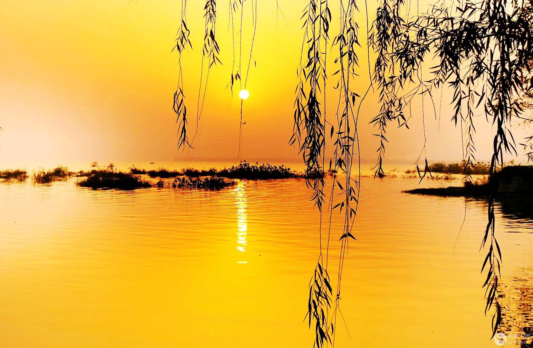 白龟湖落日