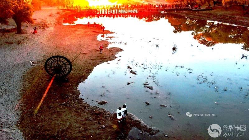 0255  額济纳旗黑城溺水胡杨林二道桥风景(航拍)--1    DJI_0317副本副本 - 副本.jpg