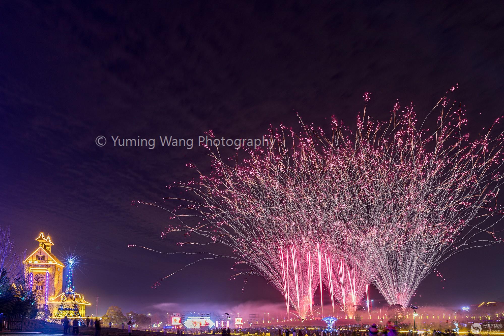 火树红花迎新年
