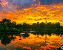 晚  霞  染  翠  湖