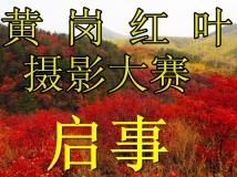 """""""黄岗红叶""""摄影大赛启事"""