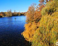 秋日的河湖景色