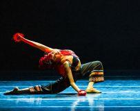 舞蹈--红蜻蜓