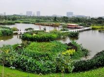 【13年第4期月赛】《湿地公园》
