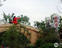 南阳世界月季大观园采撷(27)——常州园