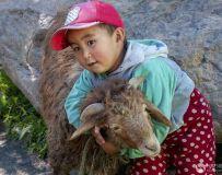 光影中国网2020年第6期月赛:七彩童年›(我爱我的羊宝宝)