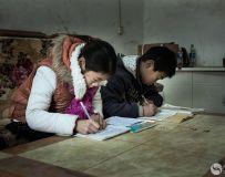 勤奋学习的姐弟